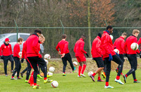 09.02.2017 training bosuil
